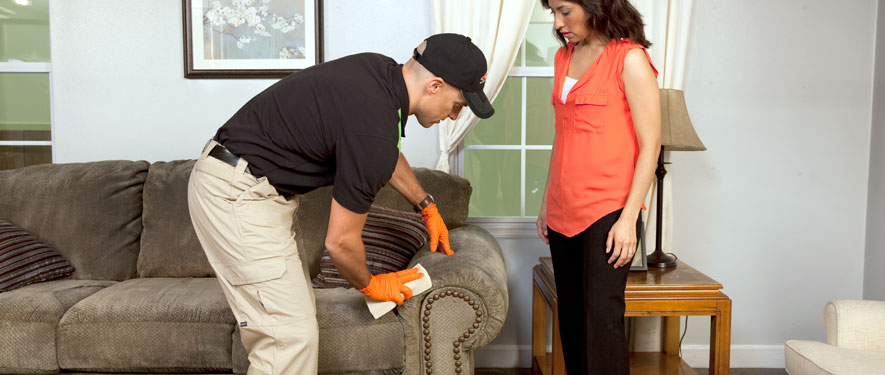 Lafayette, CA carpet upholstery cleaning
